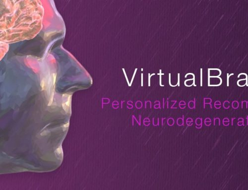 SPECS-lab is a member of Virtual Brain Cloud  consortium!